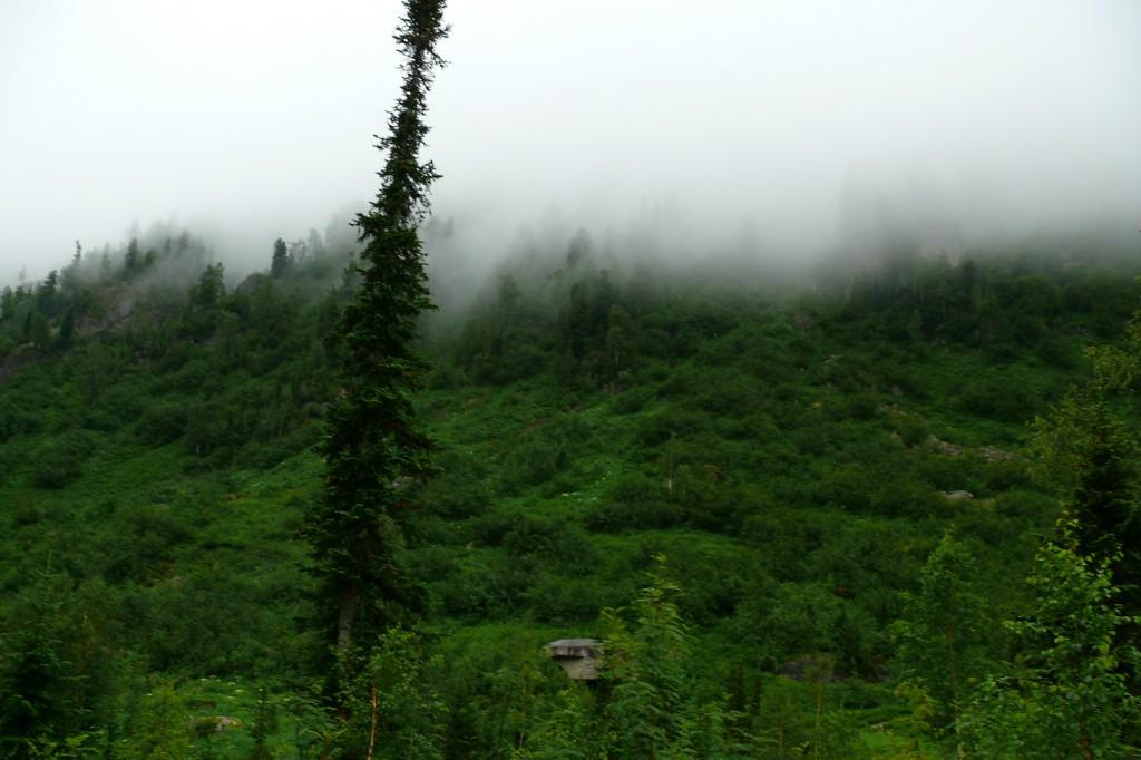 Туман в Кузнецком Алатау